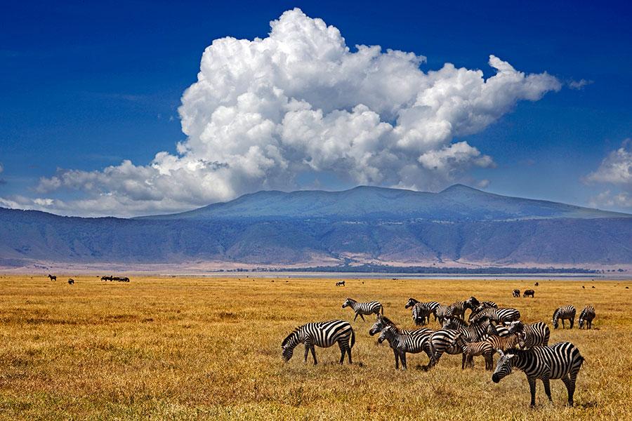 Benny-Rebel-Fotoreise_Fotosafari-Tansania-Ruanda-Afrika_A5