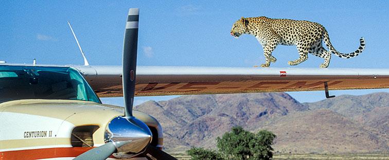 Fotoreise-Fotosafari-Botswana-Simbabwe-Afrika-023