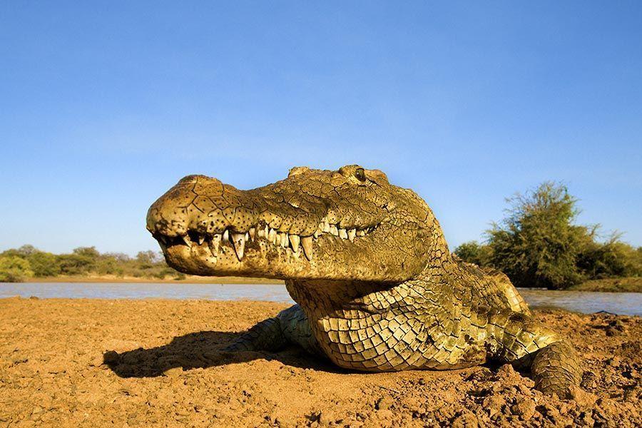 AXBenny-Rebel-Fotoreise-Suedafrika