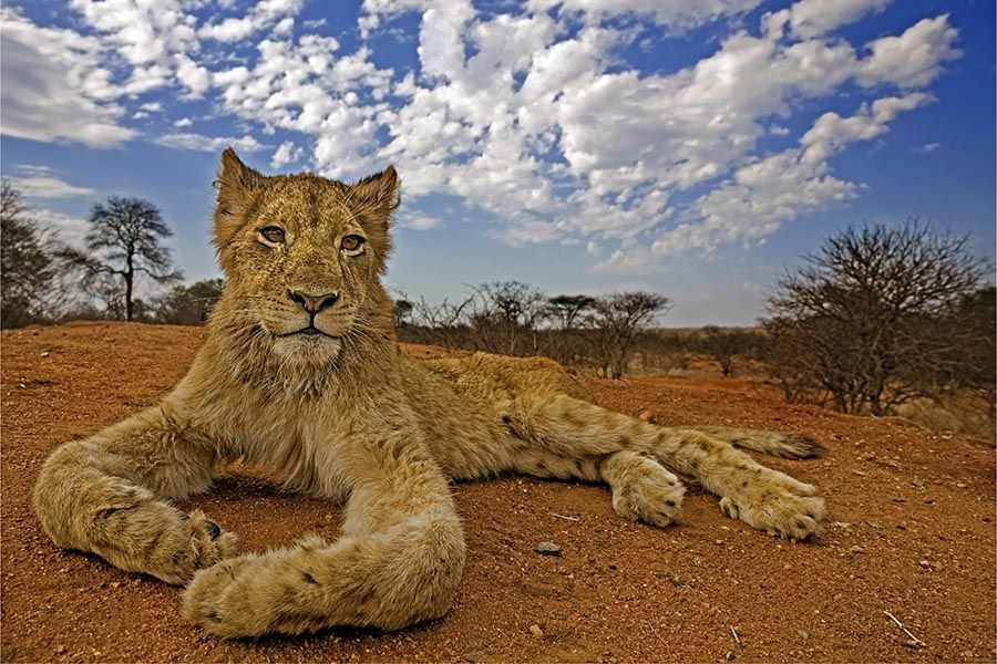 AZBenny-Rebel-Fotoreise-Suedafrika