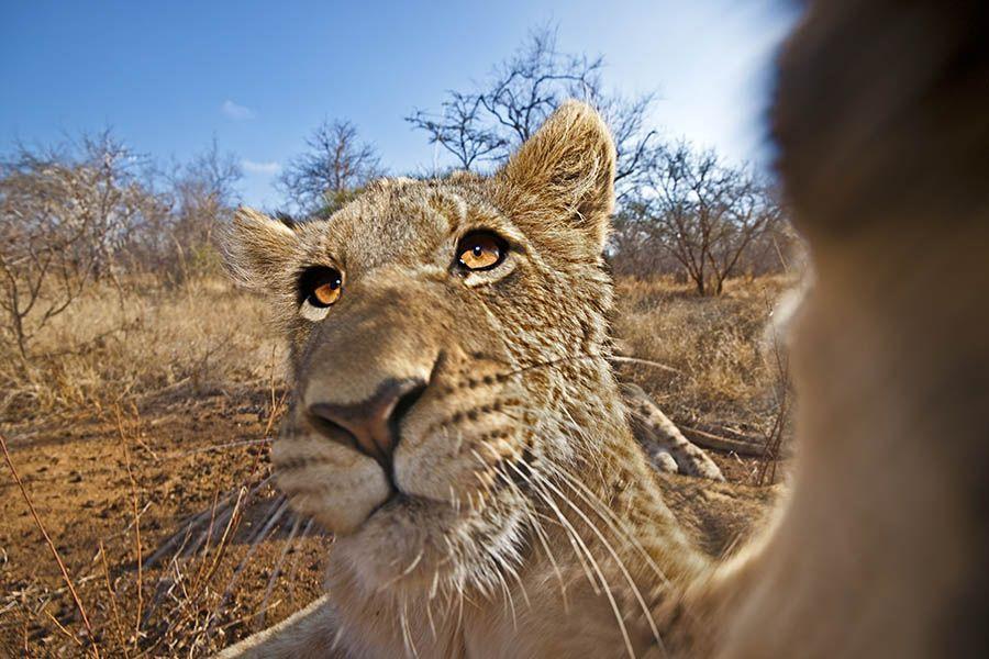 BABenny-Rebel-Fotoreise-Suedafrika