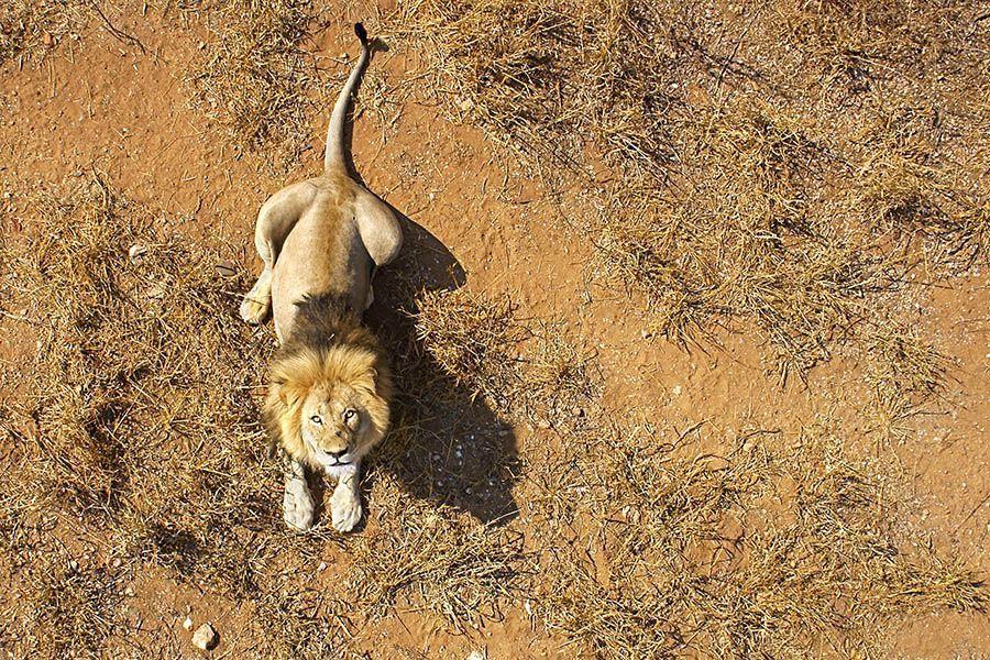 DGBenny-Rebel-Fotoreise-Suedafrika
