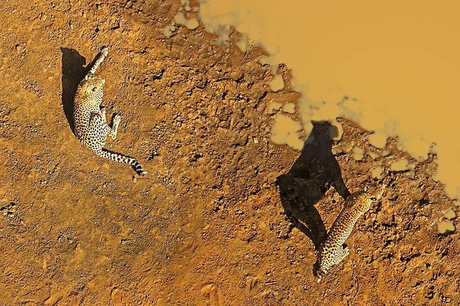 DHBenny-Rebel-Fotoreise-Suedafrika
