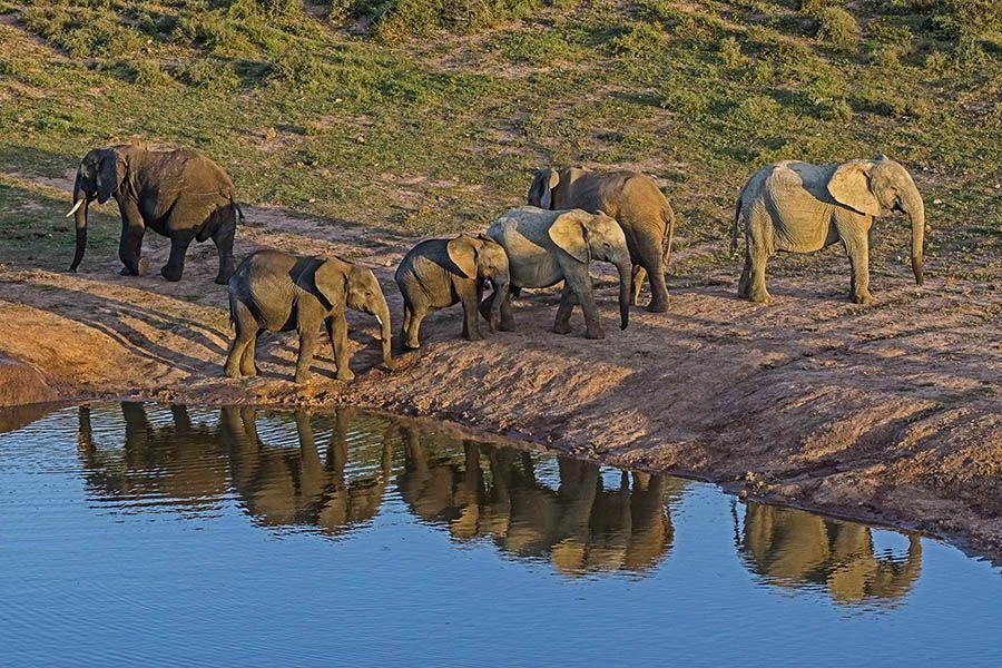 DLABenny-Rebel-Fotoreise-Suedafrika