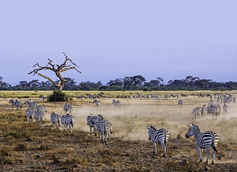 EGABenny-Rebel-Fotoreise-Kenia