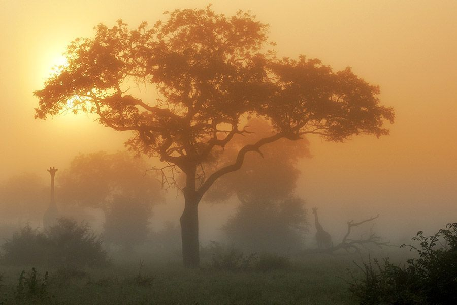 EJBenny-Rebel-Fotoreise-Suedafrika