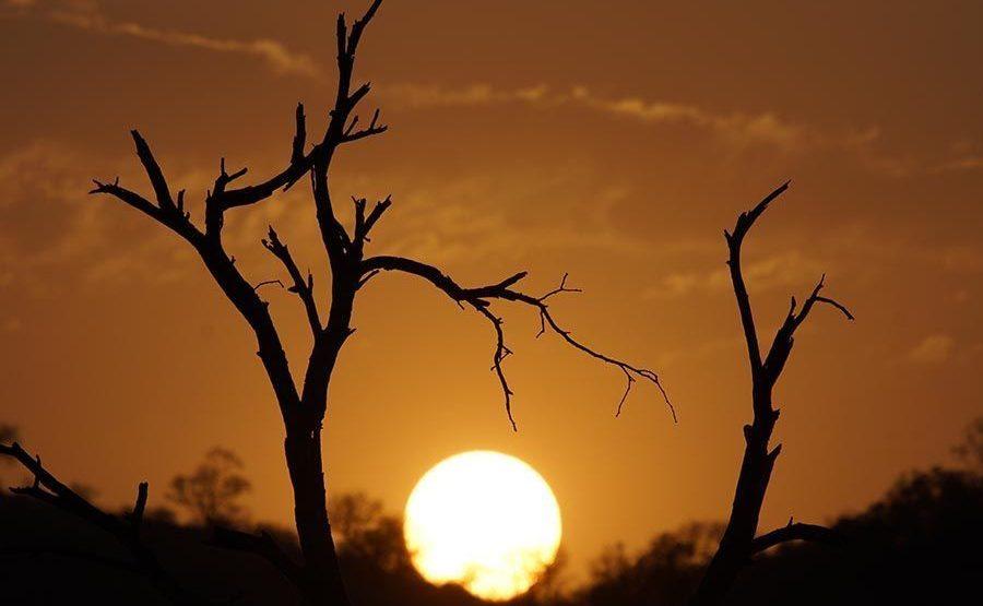 AAKABenny-Rebel-Fotoreise-Suedafrika