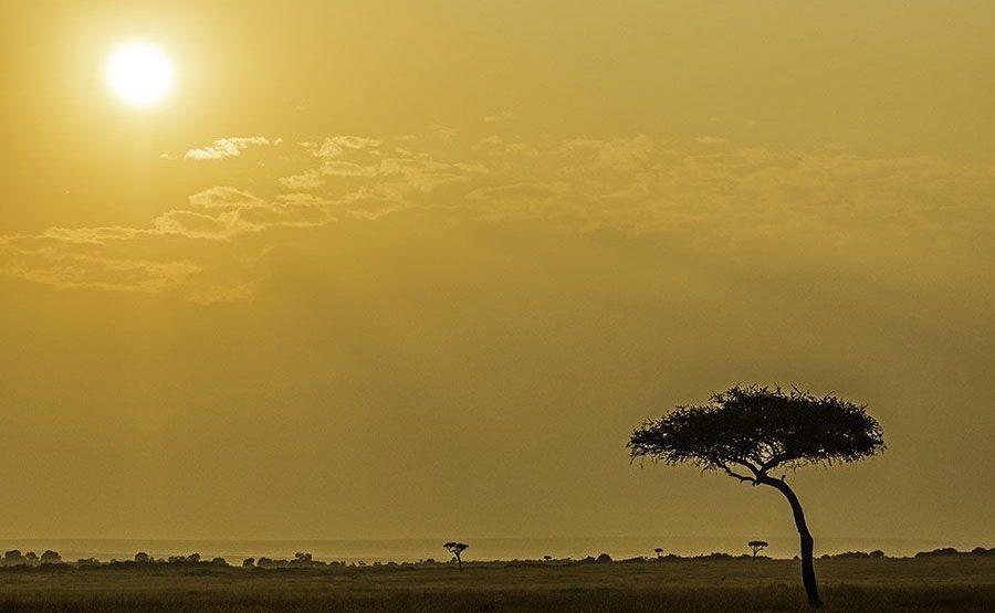 ABC-Benny-Rebel-Fotoreise-Maasai-Mara-Kenia-