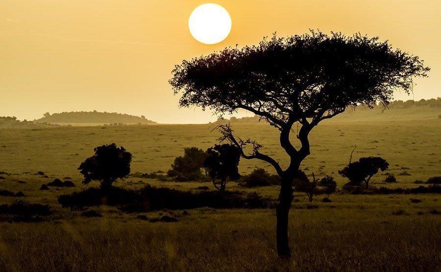 ABC-Benny-Rebel-Fotoreise-Maasai-Mara-Kenia