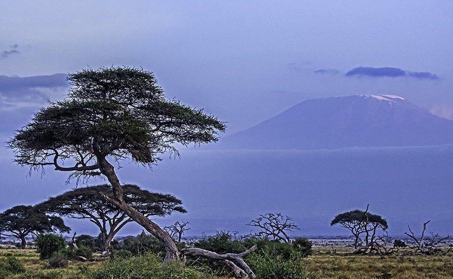 ACA-Benny-Rebel-Fotoreise-Kenia