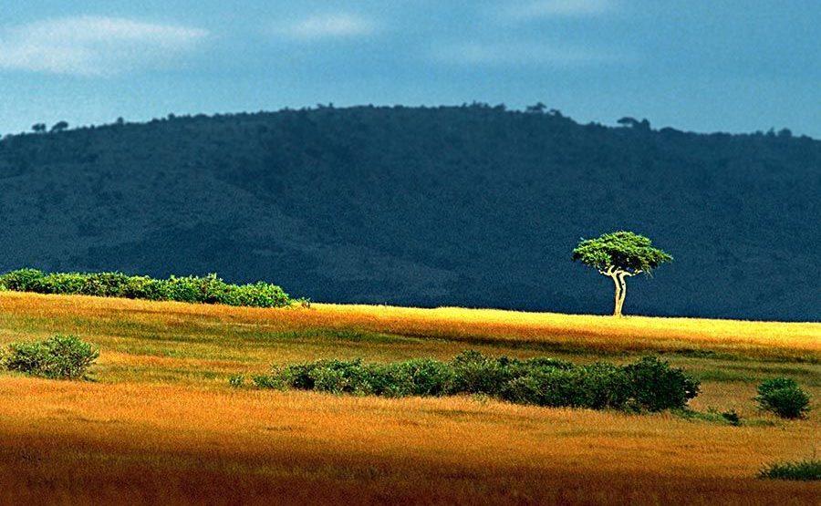 ACABenny-Rebel-Fotoreise-Kenia