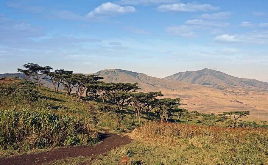 ACABenny-Rebel-Fotoreise-Ngorongoro