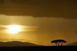 ACL-Benny-Rebel-Fotoworkshop-Serengeti-Tansania-187