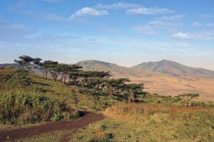 ADY-Benny-Rebel-Fotoreise-Ngorongoro