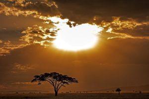AFABenny-Rebel-Fotoworkshop-Tansaniai