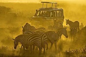 AFQ-Benny-Rebel-Fotoreise-Kenia-Tourismus