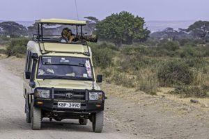AFR-Benny-Rebel-Fotoreise-Tansania-Tarangire-Tourismus