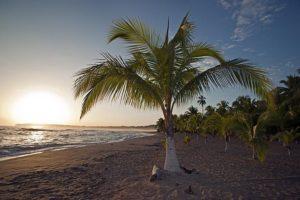 AGKBenny-Rebel-Fotoreise-Costa-Rica