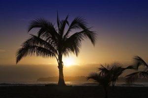 AGLBenny-Rebel-Fotoreise-Costa-Rica