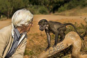 AHJ-Benny-Rebel-Fotoreise-Suedafrika-CARE