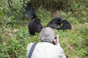 AIe-Benny-Rebel-Fotosafari-Ruanda-Gorrila-Tourismus