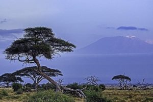 AKc-Benny-Rebel-Fotoreise-Kenia