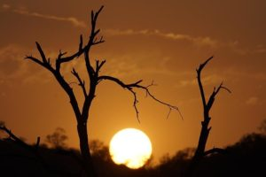 AMeBenny-Rebel-Fotoreise-Suedafrika