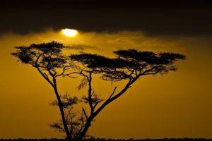 AMhBenny-Rebel-Fotoreise-Tansania