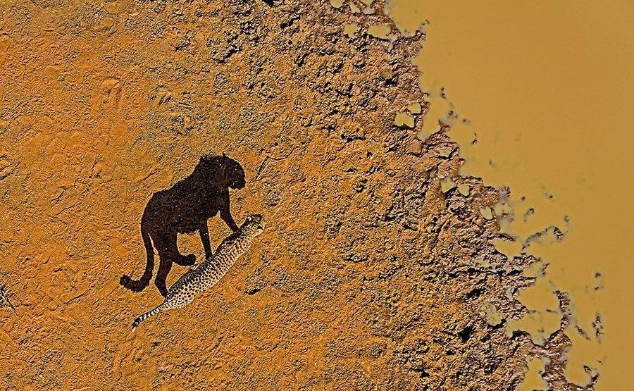 ANBenny-Rebel-Fotoreise-Suedafrika