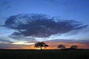 ATfBenny-Rebel-Fotoreise-Tansania