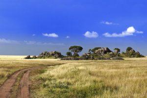 ATg-Benny-Rebel-Fotoreise-Serengeti-Tansania
