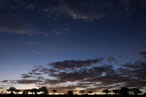 ATm-Benny-Rebel-Fotoreise-Serengeti-Tansania