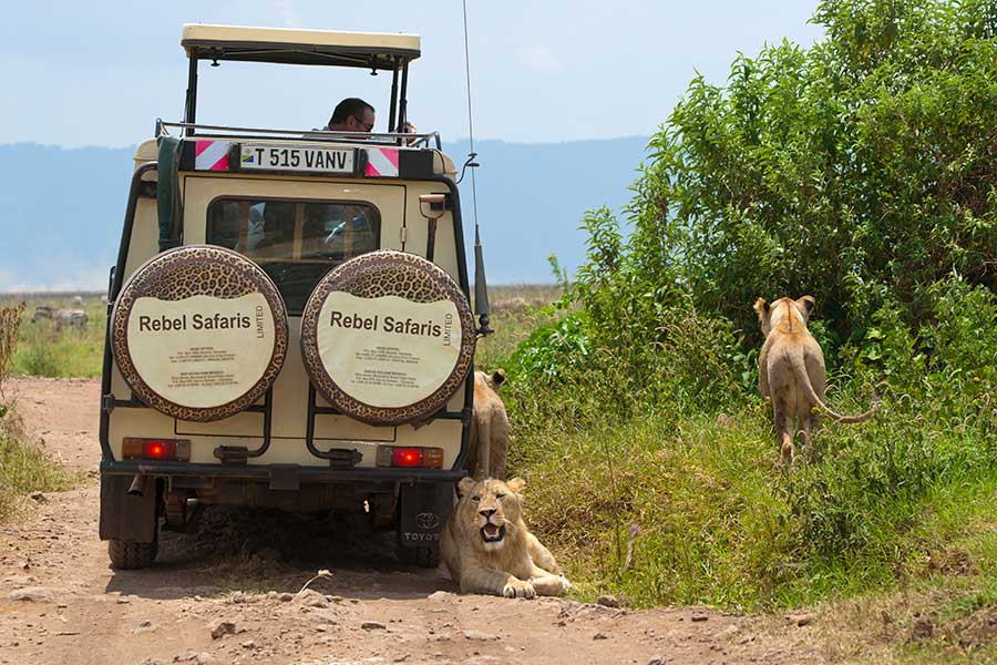 Benny-Rebel-Fotoreise_Fotosafari-Tansania-Ruanda-Afrika_A111