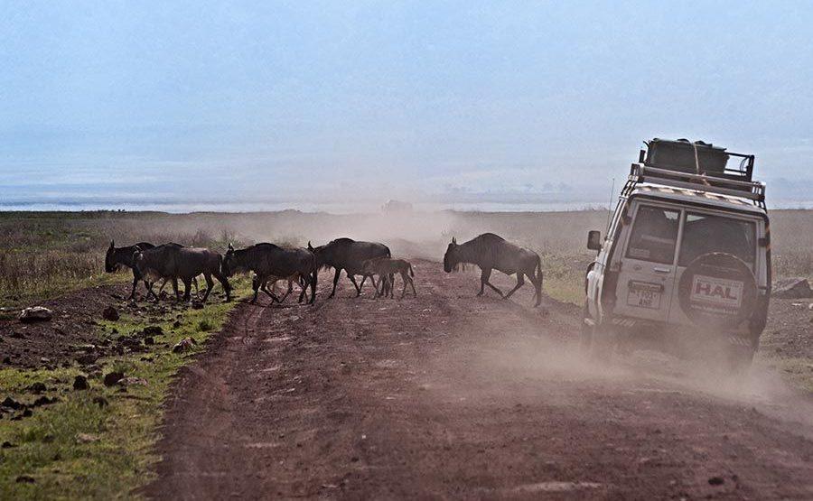 CE-Benny-Rebel-Fotoreise-Tansania-Tourismus