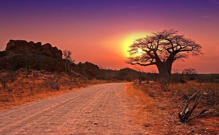 DCBenny-Rebel-Fotosafari-Suedafrika