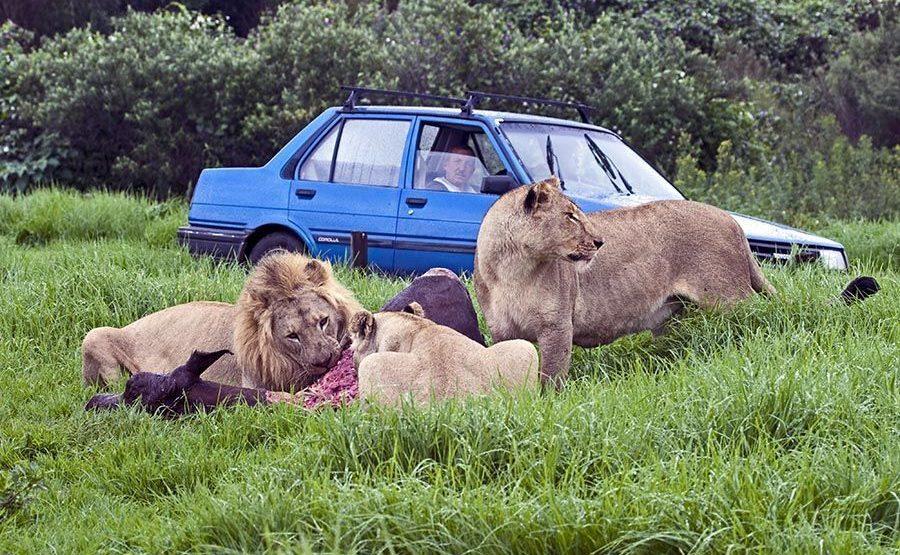 EA-Benny-Rebel-Fotoreise-Suedafrika-Tourismus