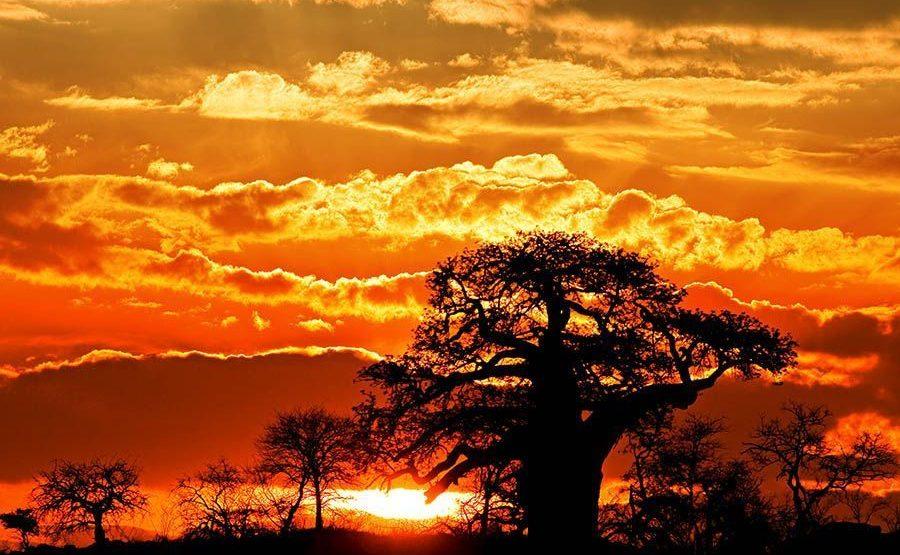 ELBenny-Rebel-Fotoreise-Suedafrika
