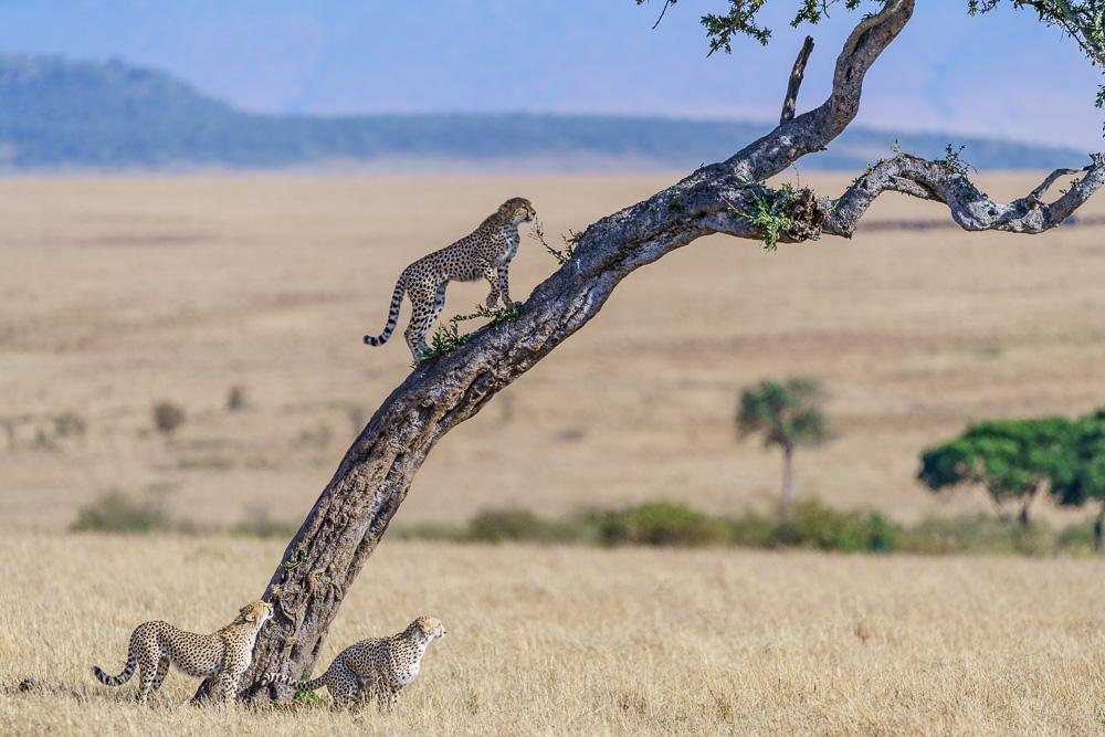 Fotoreise Kenia, Benny Rebel, Landschaft