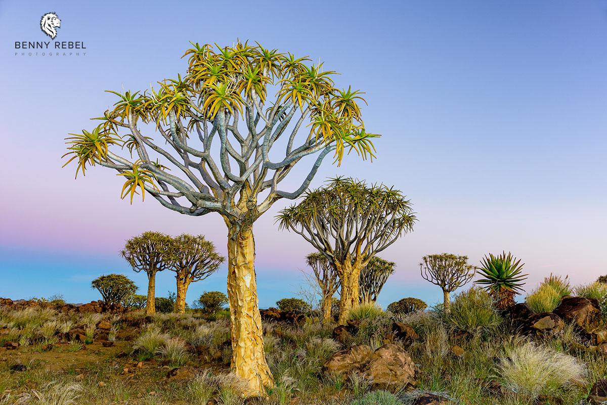 Landschaftsfotografie, Namibia Süd, Benny Rebel
