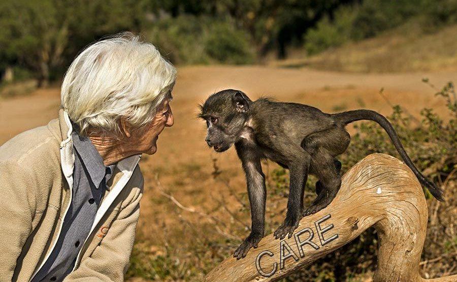 LA-Benny-Rebel-Fotoreise-Suedafrika-CARE