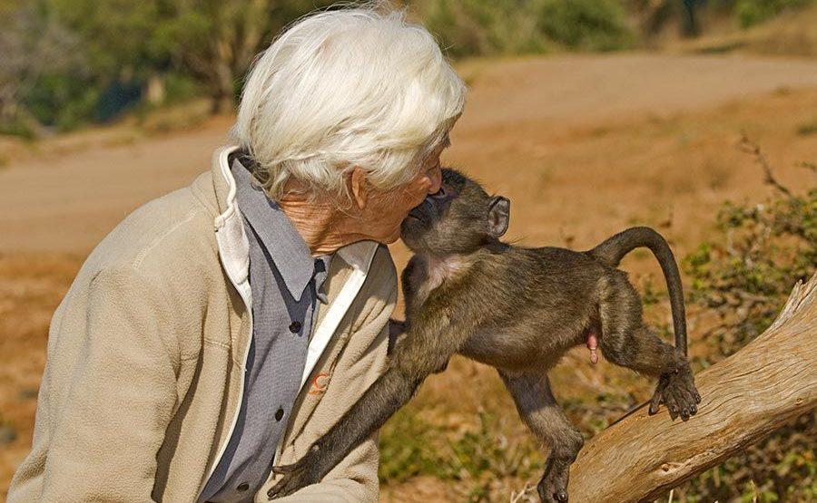 LI-Benny-Rebel-Fotoreise-Suedafrika-CARE