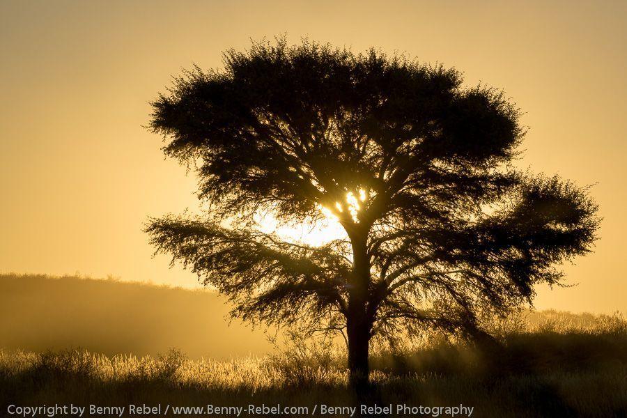 Namibia Nord, Fotoreise, Landschaftsfotografie mit Benny Rebel