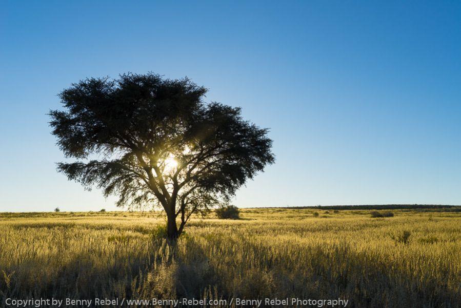 Namibia Nord, Fotoreise, Landschaftsfotografie,