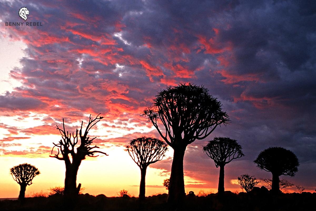 Süden Namibias, Fotoreise