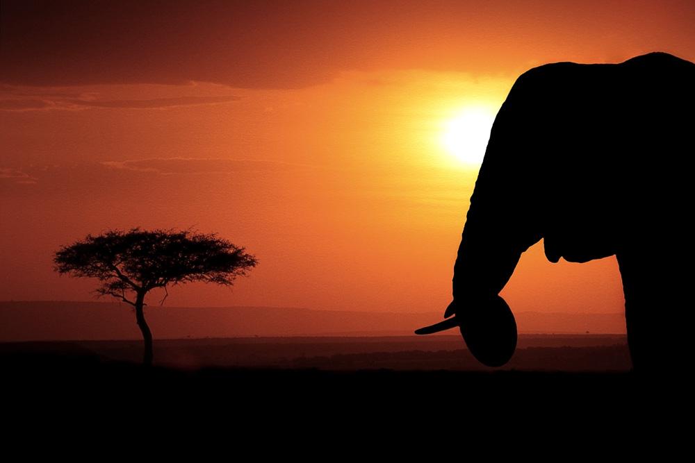 Norden Kenia, Fotografie, Urlaub