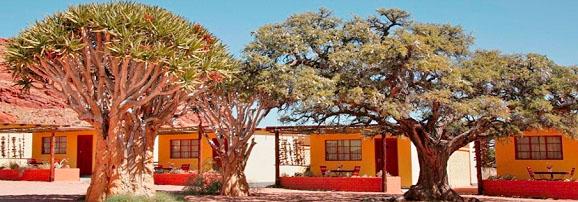Fotosafari-Namibia-Fotoreise-Afrika-13