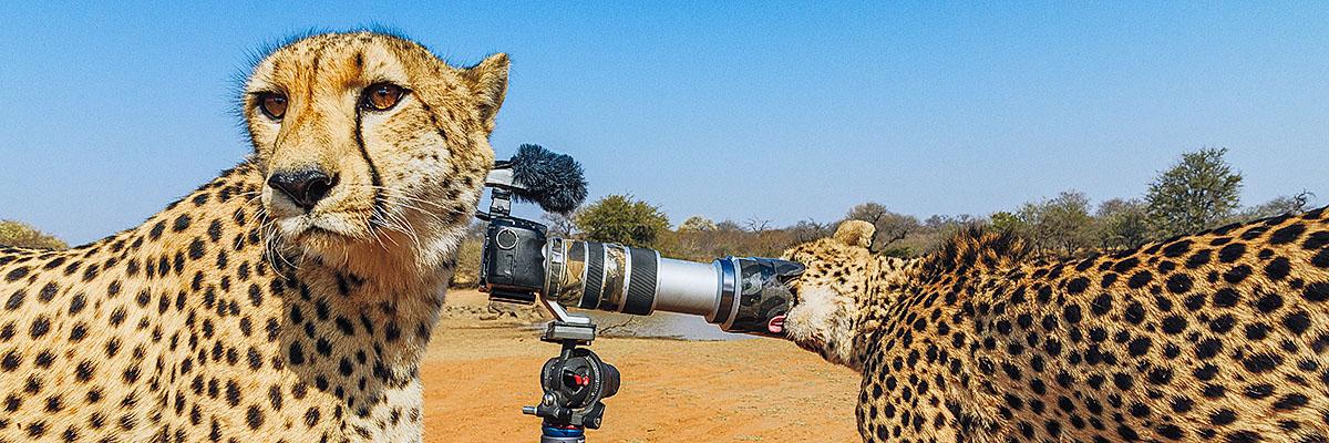 Benny Rebels Fotoreisen durch Afrika