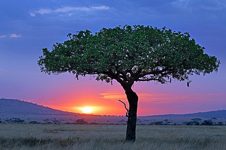 Fotosafari_Afrika_Fotoreise_Nord_Kenia_06