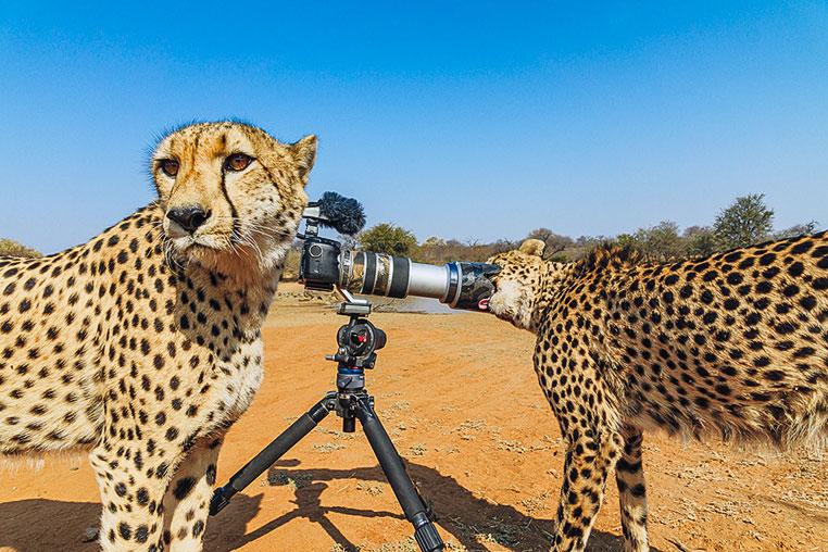 Fotosafari_Afrika_Fotoreise_Nord_Kenia_28