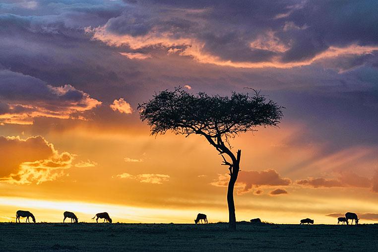 Fotosafari_Afrika_Fotoreise_Nord_Kenia_37